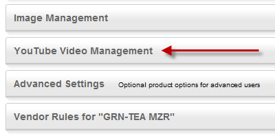 YouTube Video Support in Volusion Product Pages